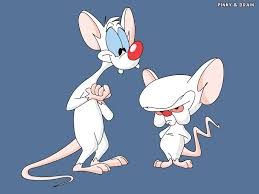 pinky and the brain